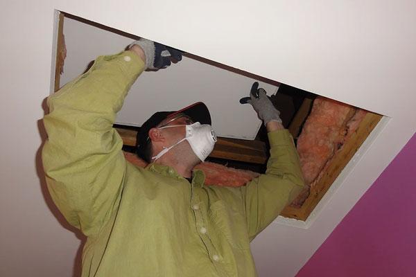 Inspection du vide sous toit